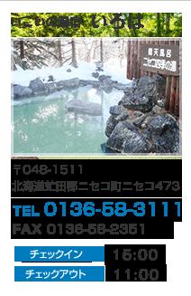 北海道虻田郡ニセコ町ニセコ473|ニセコ温泉郷 いこいの湯宿 いろは