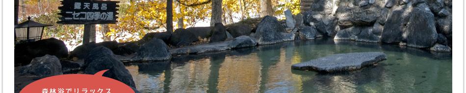 温泉|ホテルニセコいこいの村